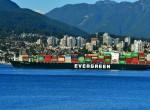 国际海运的业务范围及特点各是什么?