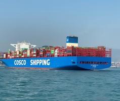 为什么国际物流运输会出现延误的情况呢?