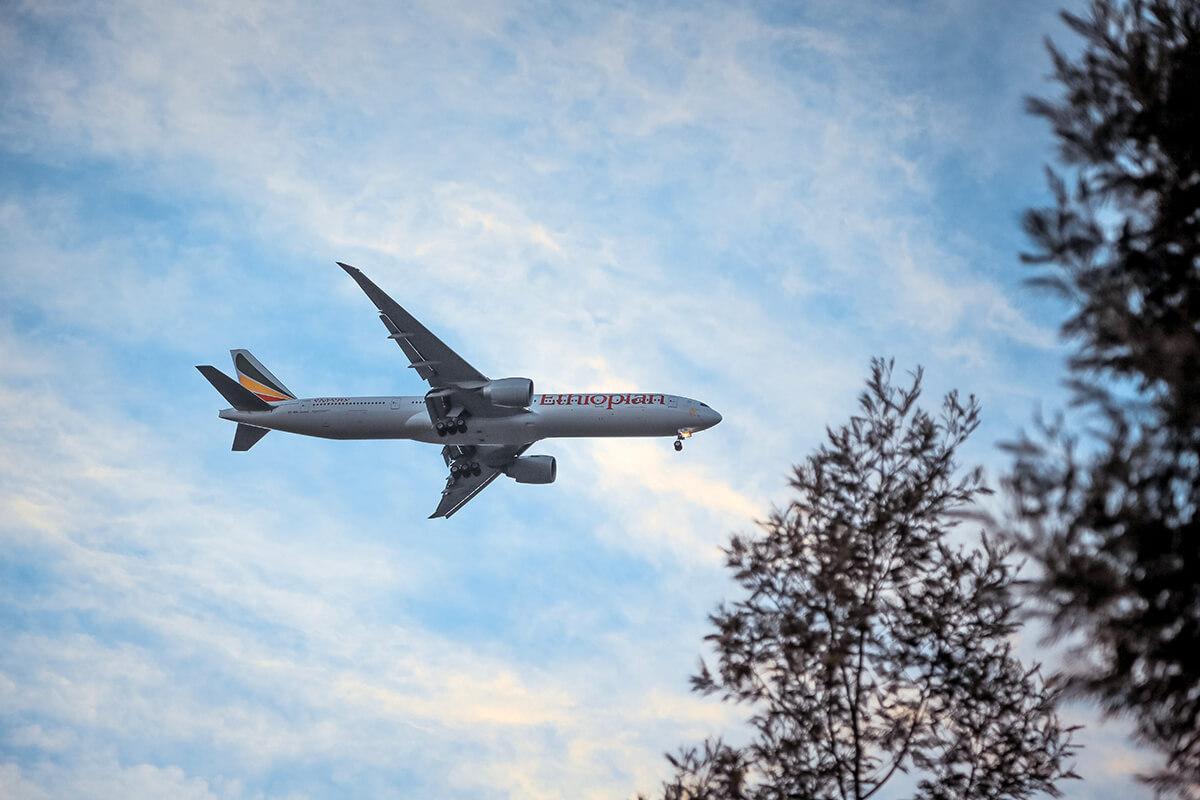 国际空运基本流程介绍