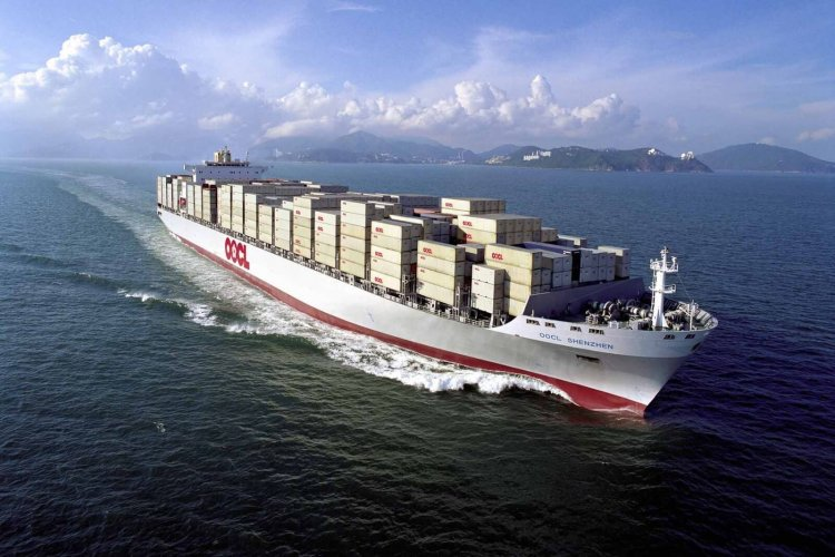国际货运代理中货物丢失或交货延误处理及职责划分